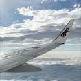 【2020・睦月】 上空にてイリオモテヤマネコの翼(JTA)を嗜む。