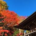 @東京都八王子市 Hachioji, Tokyo met.  高尾山 Mt.Takao  昨年紅葉の時期に行ってきました。 赤が非常に映え、関東の晴天とマッチ。 #高尾山 #東京 #紅葉  (2019/11/29)