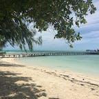 パラオ*カープ島  時計のない島。Wi-Fiも繋がない。ひたすらのんびり