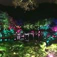 チームラボ@夜の栗林公園
