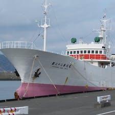 焼津市小川港にて。白 赤ピンクの漁船って、なんだかラブリー♥️