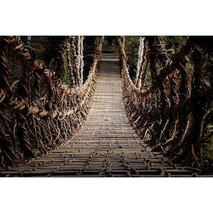 徳島県 〜祖谷渓のかずら橋〜