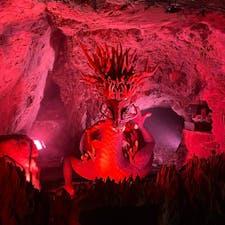 岩屋の中にいらっしゃる龍神様 音や霧もでて、まるで本物のよう