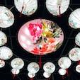 【千葉】東京ドイツ村 チャイナランタンとは中国唐時代から続く伝統行事で縁起物だそう とても綺麗で迫力があって素敵 #東京ドイツ村 #イルミネーション