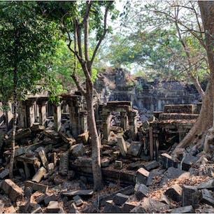 #ベンメリア #シェムリアップ #カンボジア 2020年2月  アンコール遺跡郡は白人が多かったのに ここは日本人ばっかりだった😳ラピュタ効果???