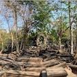 #ベンメリア #シェムリアップ #カンボジア 2020年2月  ラピュタというよりインディージョーンズみを感じた✨ この崩れた入り口が個人的には最高だった🥺🥺