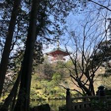 【千葉・成田】成田山新勝寺 広大な土地に荘厳な建物がたくさんありました。特に最上部の「平和大堂」にある、五大明王と曼陀羅には目を奪われます。成田山公園には桜が咲いていて、穏やかな一日を過ごしました。