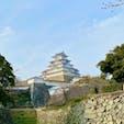 もう毎日のように見てた姫路城🏯