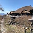 清水寺 いつ行っても 素晴らしい‼︎