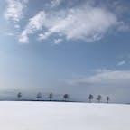 【2020・弥生】 北海道にて冬のザ・北海道を嗜む。  メルヘンの丘