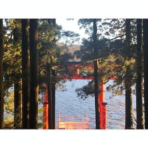 箱根神社⛩