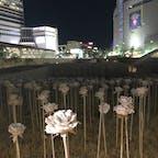 東大門デザインプラザddpの光るバラ