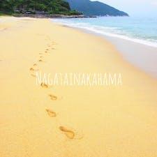 日本一の 海亀の産卵地  8月に行った時は 卵の殻が浜辺にいっぱいあったよ  みんな海まで行けたのかな🐢