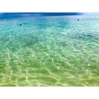 #Australia 🇦🇺 #Cairns #GreenIsland