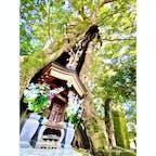 神奈川県伊勢原市 日向薬師  日本の三大薬師と知られる日向薬師♪ 自然豊かな境内には、自然と人の手によって作られた秘境があります(^^)  Instagram→marippiworld