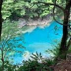 秋田県 抱返り渓谷🌿 少し歩くと大きな橋があって、そこからまた歩くと滝もあって、マイナスイオンがたくさん感じられるスポット😌 川辺で水遊びもできました。