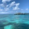 オーストラリア.ケアンズ🇦🇺 グリーン島の海🏝