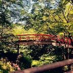 群馬県 河鹿橋