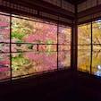 京都 #瑠璃光院