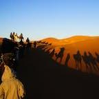 モロッコ、サハラ砂漠。 ラクダの乗り心地は、お尻がかなりの筋肉痛でした。 朝日を受けて歩くラクダの一団は圧巻でした。