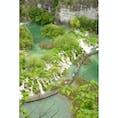 クロアチア、プリトヴィツェ湖群公園。 上から見るとエメラルドの湖の色、自然に出来た滝の美しさが目を惹きます。