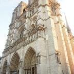 燃えたなんて信じられない   #パリ#ノートルダム大聖堂#海外旅行