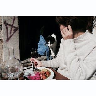 🇹🇷Istanbul 猫と一緒にご飯食べた(狙われてるだけ)