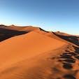 デューン45 ナミブ砂漠、ナミビア  自然が生み出す造形美