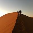 デューン45 ナミブ砂漠、ナミビア  日の出とともに。