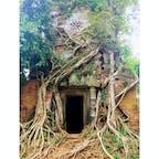 カンボジア、コーケー遺跡。