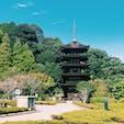 【山口県/瑠璃光寺】 日本に現存する五重塔で10番目に古く、日本三名塔の一つ。 美しいの一言! 桜や梅の季節に訪れるととても素敵です。  #山口県 #瑠璃光寺 #五重塔