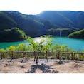 【静岡】   エメラルドグリーンの湖 かわせみ湖です。