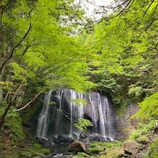 滝までの道のりも渓谷感あってとてもきれい。緑が深くなってきた新緑と滝と、とても爽やかな景色でした。 #達沢不動滝