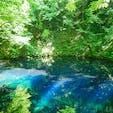 青森県十二湖の青池。信じられないくらい、本当に青かった!今まで見た景色の中で1番かもしれない!お勧めしたい場所ランキングトップ!