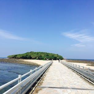 青島神社へつながる橋からの眺め  両サイドには鬼の洗濯板が連なる 青い海が 前方には青島と赤い神社が見える!