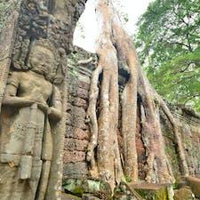 カンボジア、アンコールワット遺跡。