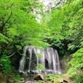 達沢不動滝/福島 早朝の澄んだ森によく映えました*⍋