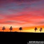 おとぎ話に出てきそうな田園風景が広がっている北海道大空町のメルヘンの丘。映画やCMのロケ地にもなっており、フォトスポットとして人気の場所です。緩やかな丘陵に日が沈んでいく夕暮れ時はまるで絵画のように美しく、多くの人が車を停めて撮影していきます!#北海道 #大空町 #メルヘンの丘