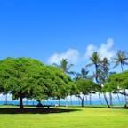 Hawaii 青い空①