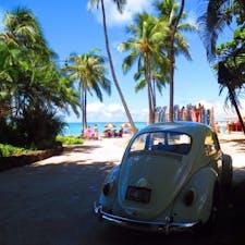 Hawaii 青い空③