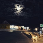 インド、レー→マナリの間、夜行バスの休憩所のひとコマ。月が眩しい。