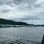 野尻湖で釣り🎣 天気が悪くて景色の写真はこんな感じばかりになっちゃいました😅