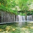 2020.7.31.白糸の滝 長野県 軽井沢  滝の前に川がない不思議な滝。地面から染み出しているのにこの水量。駐車場からの距離もちょうどいい∩^ω^∩
