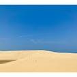 心地の良い夏がありました。 初めての鳥取は砂丘から。