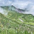 2020年7月25日から8月7日と2週間の北海道登山⛰旅。 感染対策を万全にし、マイカーにて🚗  利尻富士登山から大雪山系の旭岳から黒岳縦走🐻  利尻富士では8合目あたりは急傾斜のお花畑🌸綺麗でした。