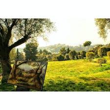 フランス、コートダジュールのルノワール美術館。 ルノワールが晩年を過ごしたお家と庭が残っています。