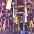 廣禅寺  風鈴祭【三重】  今年はコロナ撲滅の願いを込めて吊るされているみたい⭐︎  あとから風鈴祭り限定の御朱印があることを知ることに、、 でも風が吹いたら一斉に鳴る音色がとても心地よかった⭐︎  早くコロナがなくなって自由に旅行に行けますように…