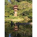 浄瑠璃寺 寺猫ちゃんたちがたくさん居るお寺です。