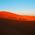 モロッコの大砂丘メルズーガ🇲🇦 ラクダに乗って砂漠を歩く💓🐫🐫🐫