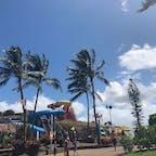 📍Hawaii,USA  #Hawaii #USA #WetAndWildInHawaii